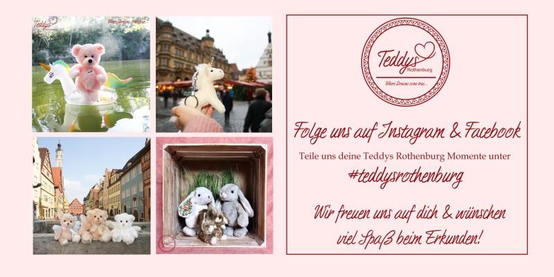 media/image/Startseite-Teddys-Rothenburg-Social-Media-Instagram-Facebook.jpg